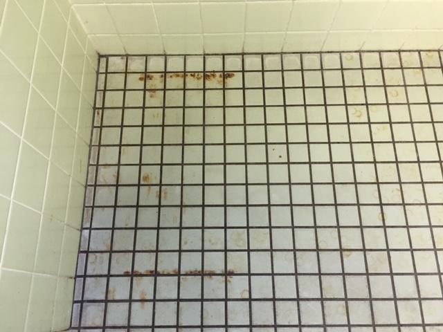 タイル清掃 浴室.JPG