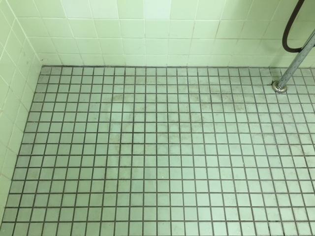タイル清掃.JPG